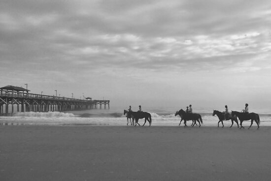 Horses At The Pier by Dawne Dunton