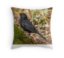 Male Blackbird Throw Pillow