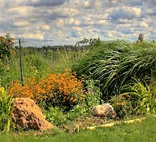 Community Garden in Summer by Lisa Cook