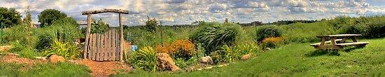 Community Garden in Summer by Lisa Cook