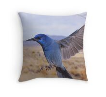 Pinion Jay Throw Pillow