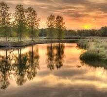 A Late Summer Reflection by nikongreg