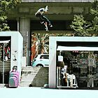 Jamie Thomas 3 Flip by foremanphotos