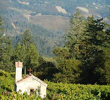 The Weigh Station~Napa Valley, California by Joni  Rae