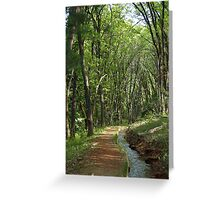 Ditch Trail - Grass Valley, California Greeting Card