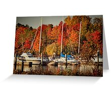 Buffalo Bay Marina 2 Greeting Card