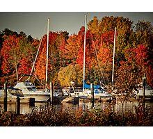 Buffalo Bay Marina 2 Photographic Print