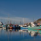 Fishing boats at rest by Dan Edwards