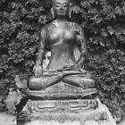 Buddha by John Callaway