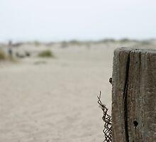 Old Fence Pole by Henrik Lehnerer