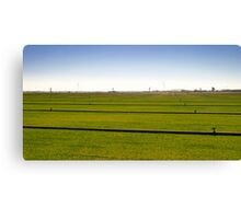 Where The Grass Is Growing Canvas Print