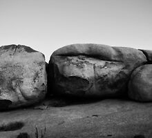 Joshua Tree II by davidalf