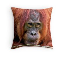 Who do you think you are looking at! Throw Pillow