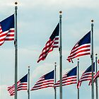Flags of the Washington Monument by Kurt LaRue