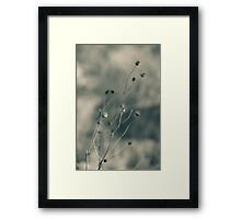 Time is fleeting -  Irwin Prairie Nature Preserve Framed Print