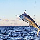 Marlin Canvas - Gold Time by blackmarlinblog