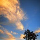 Beneath a wondrous sky by John Conway