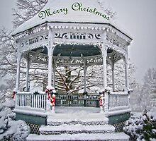 Merry Christmas by Susan S. Kline