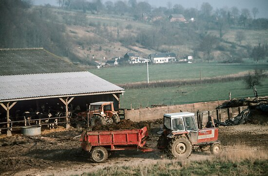 Farmer taking manure from animal shed Les Hazons 19840215 0015 by Fred Mitchell