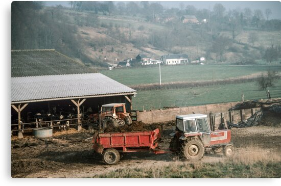 Farmer taking manure from animal shed Les Hazons 198402150015 by Fred Mitchell