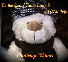 Winners Banner - Love of Teddy Bears by EdsMum