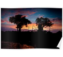 Trees during sunset in Cambodia Poster