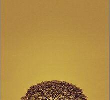 ' Solo '  by abhishek dasgupta