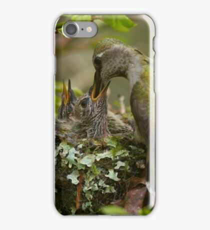 Hummingbird Feeding Babies iPhone Case/Skin