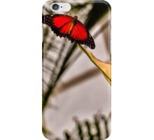 Spread Your Wings and Fly iPhone Case/Skin