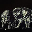 """The Wolves Are Here"" by Susan Bergstrom"