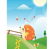 Cute Love Hedgehog with Butterfly Sunny Day Photographic Print