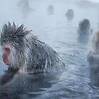 relaxing in the hot springs by Istvan Hernadi
