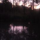 Sunset by JulieB195