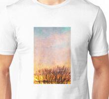 December Sky Unisex T-Shirt