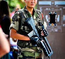 Garde Militaire by seanusmaximus
