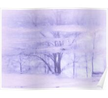 Winter reflections in lavender Poster