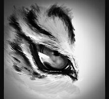 Felin's eye by Jessirena