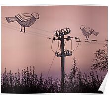 'Birds on a wire' Poster