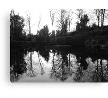 Reflecting trees. Canvas Print