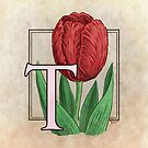 T is for Tulip by Stephanie Smith