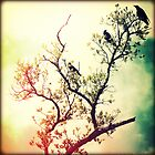 Tree of Crows by Chris Andruskiewicz