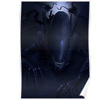 Alien Xenomorphs  Poster