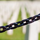 Study of the Chains of Arlington Cemetery (3 of 3) by Kurt LaRue