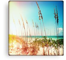 Sanibel Sea Oats I Canvas Print