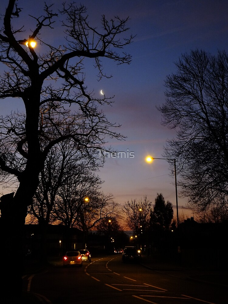 Winter Dawn in the Suburbs of London by Themis