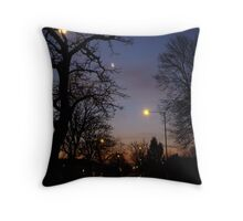 Winter Dawn in the Suburbs of London Throw Pillow