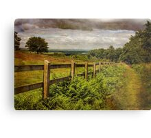 Beacon Hill, Leicestershire, UK Metal Print