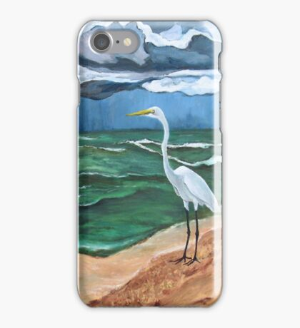 """""""The Storm and the Egret. (Point-of-Rocks: Siesta Key, Florida.)"""" iPhone Case/Skin"""
