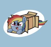 Rainbow Dash in a box by alfa995
