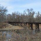 Old Railroad Bridge by RenieRutten